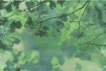 Primavera Liście Verde Dekor 50x33.3