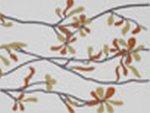 Polcolorit Punto Kwiat Orange Dekor 3x25