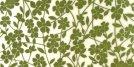 Polcolorit Rapsodia Tapeta Verde Dekor 50x25