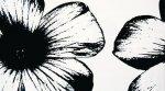 D-Floral White 59,3x32,7 TU_8664